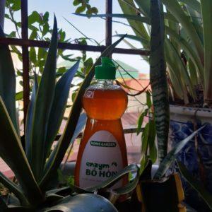 Bồ Hòn thiên nhiên - Món quà tặng chị em nội trợ