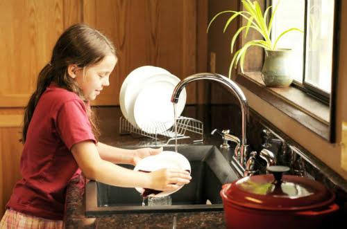 nước rửa chén enzyme bồ hòn