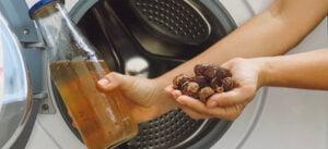 Hướng dẫn dùng Bồ Hòn để giặt quần áo bằng máy giặt